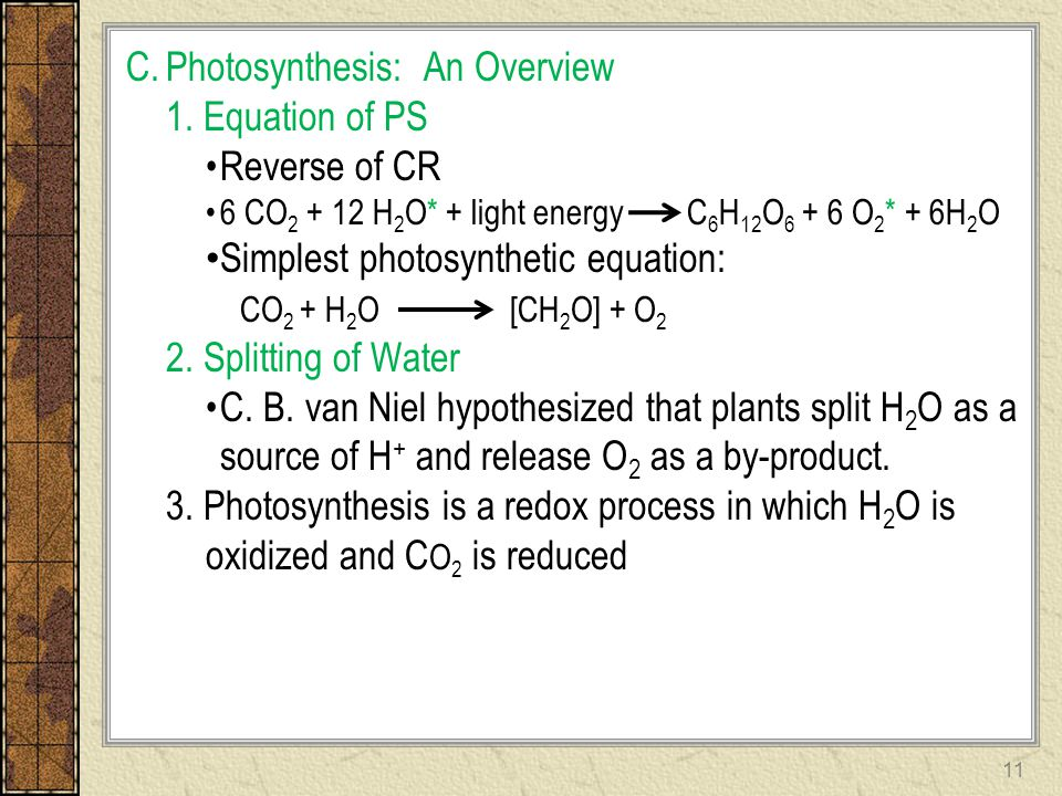 Photosynthesis: An Overview 1. Equation of PS Reverse of CR