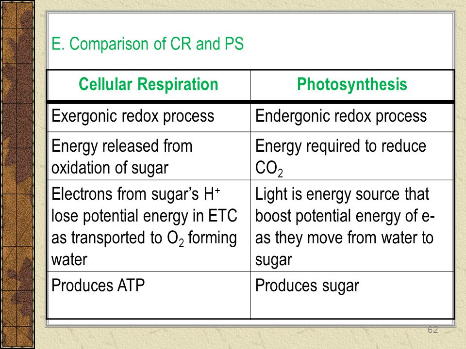 E. Comparison of CR and PS