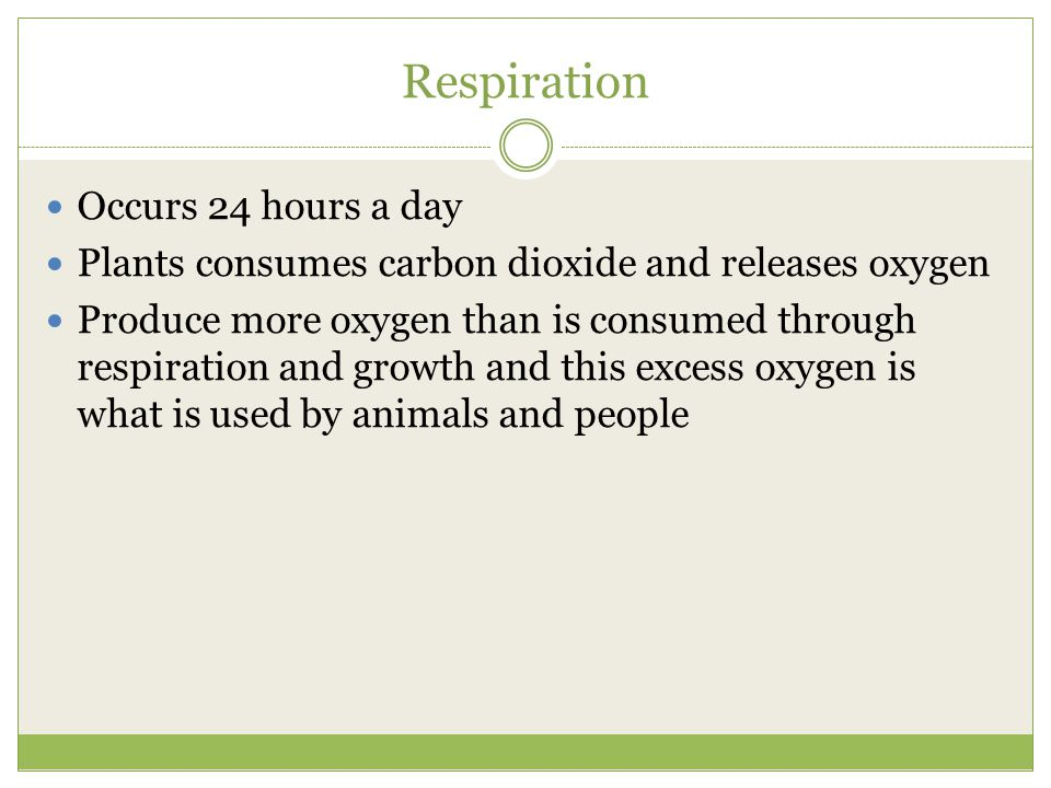 Respiration Occurs 24 hours a day