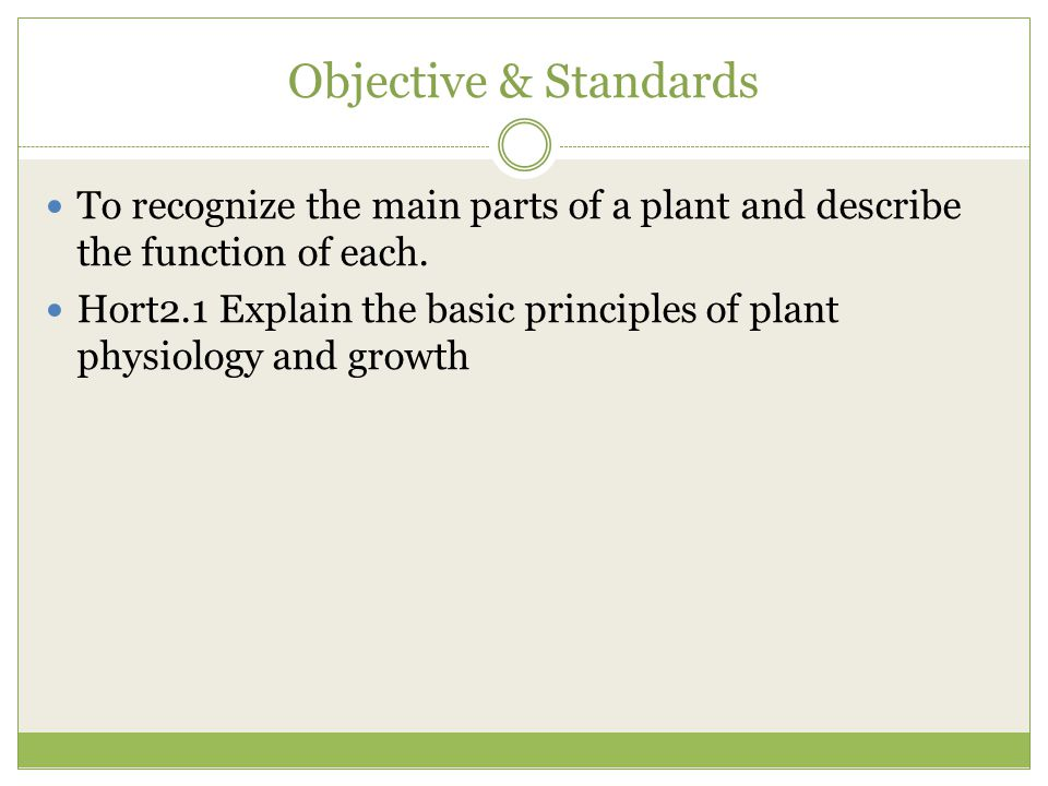 Objective & Standards To recognize the main parts of a plant and describe the function of each.