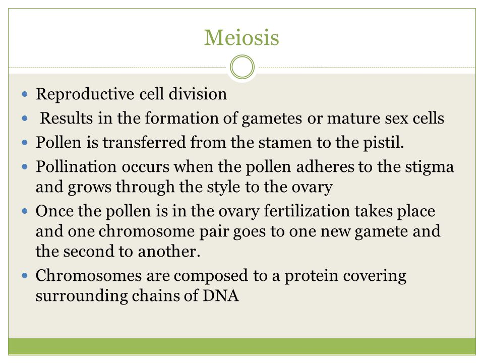 Meiosis Reproductive cell division