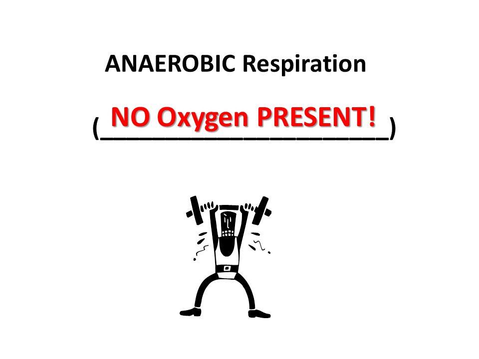 ANAEROBIC Respiration (______________________)