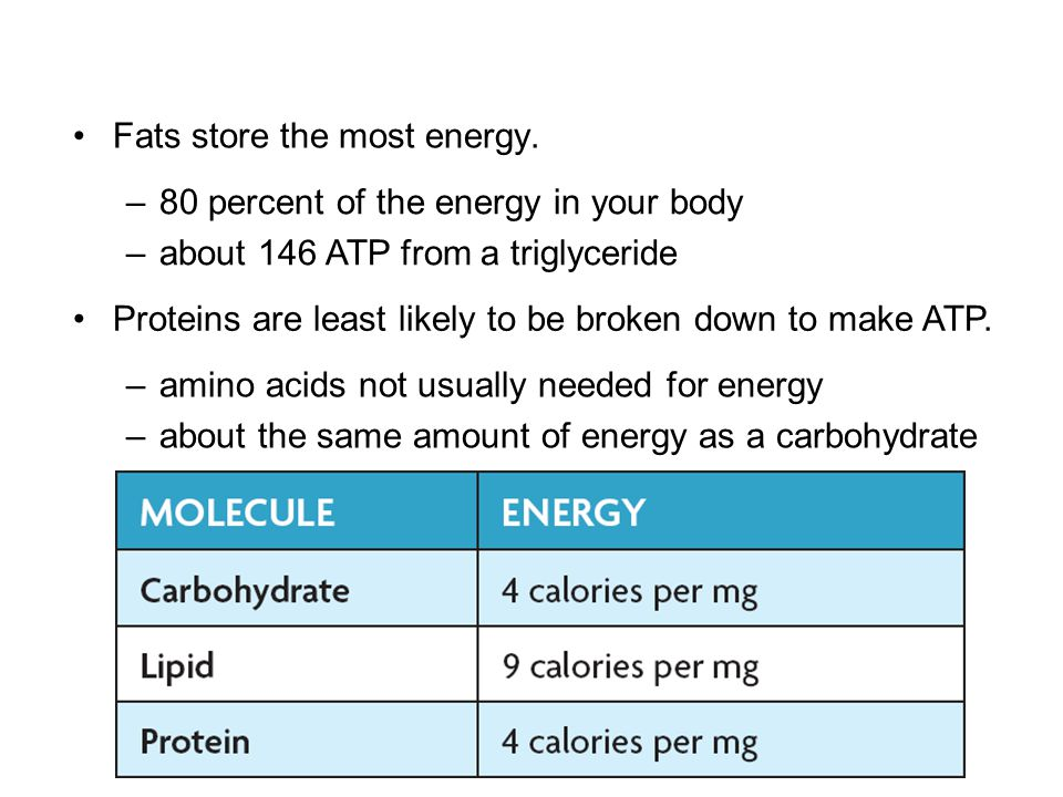 Fats store the most energy.