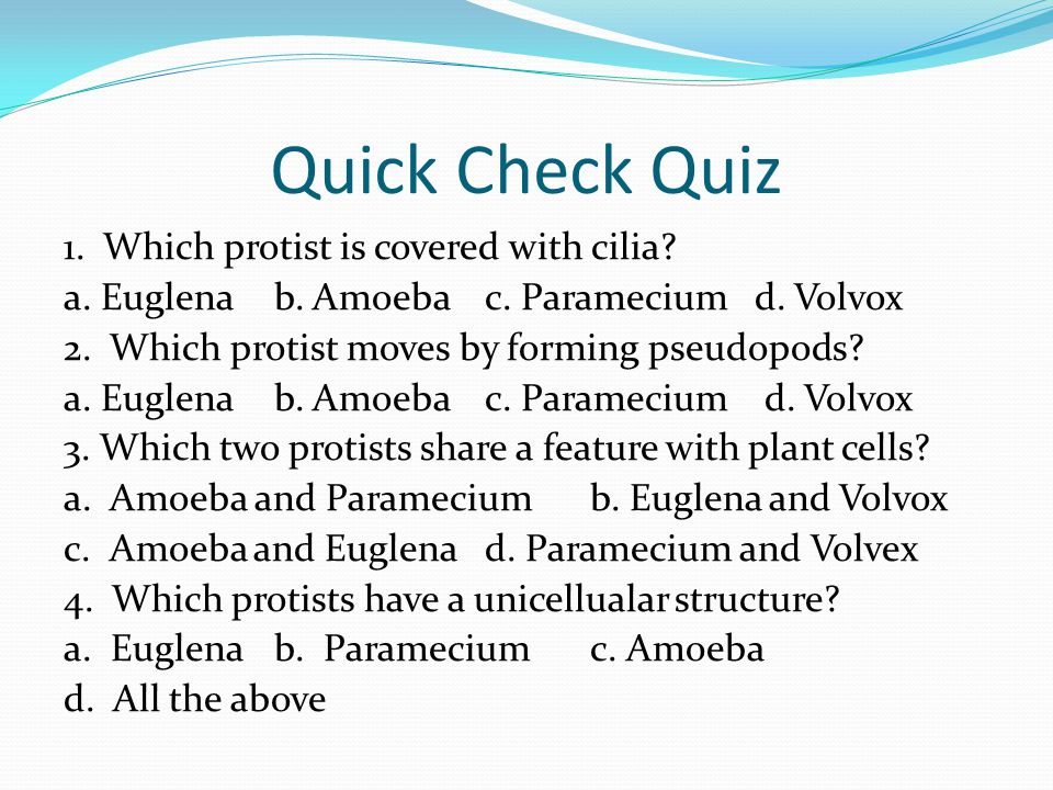 Quick Check Quiz