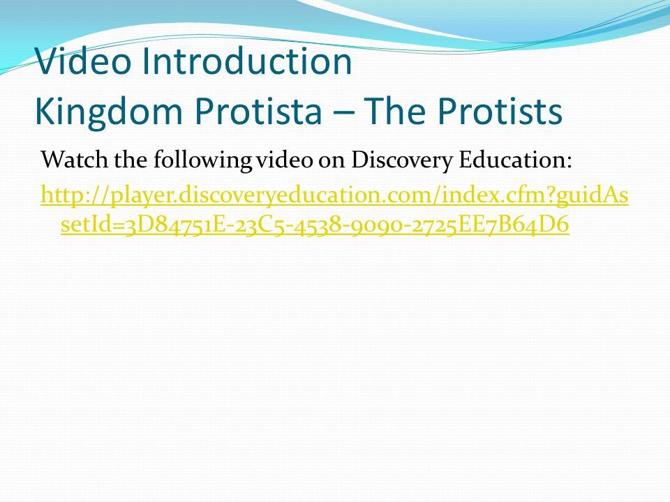 Video Introduction Kingdom Protista – The Protists