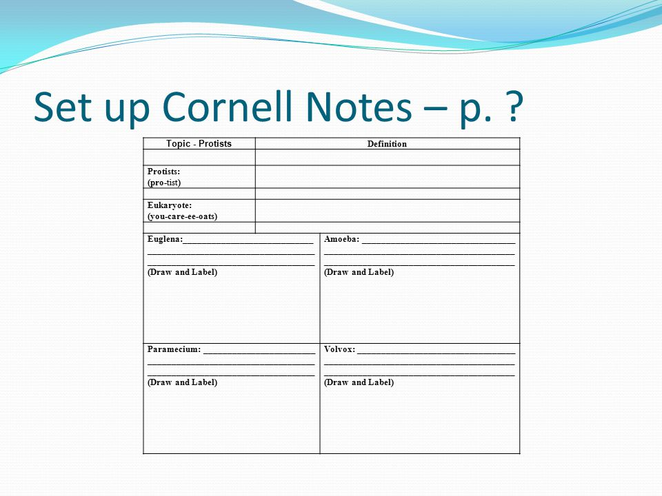 Set up Cornell Notes – p. Topic - Protists Definition Protists: