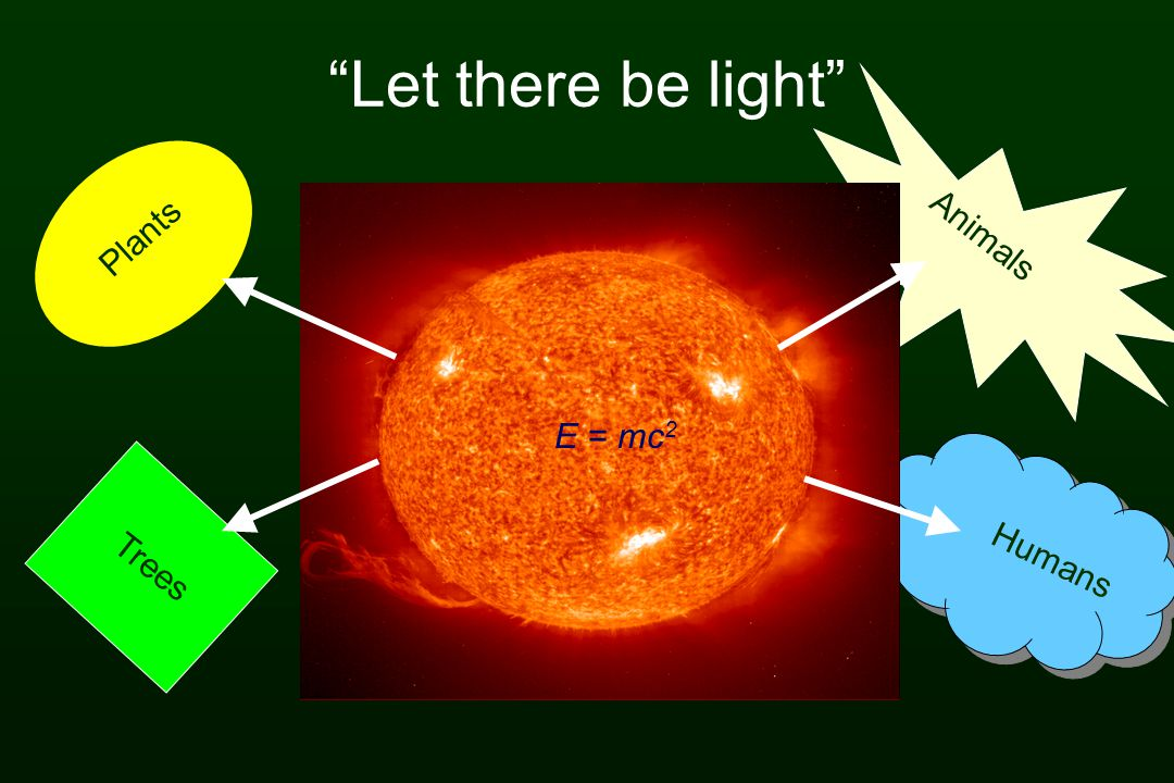 Let there be light Plants Animals E = mc2 Humans Trees