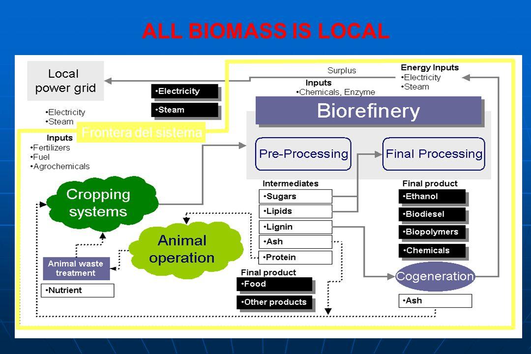 ALL BIOMASS IS LOCAL Frontera del sistema