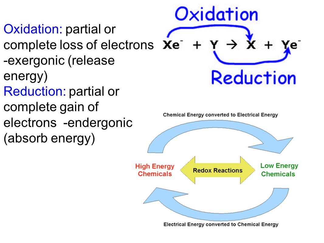 Oxidation: partial or complete loss of electrons -exergonic (release energy)