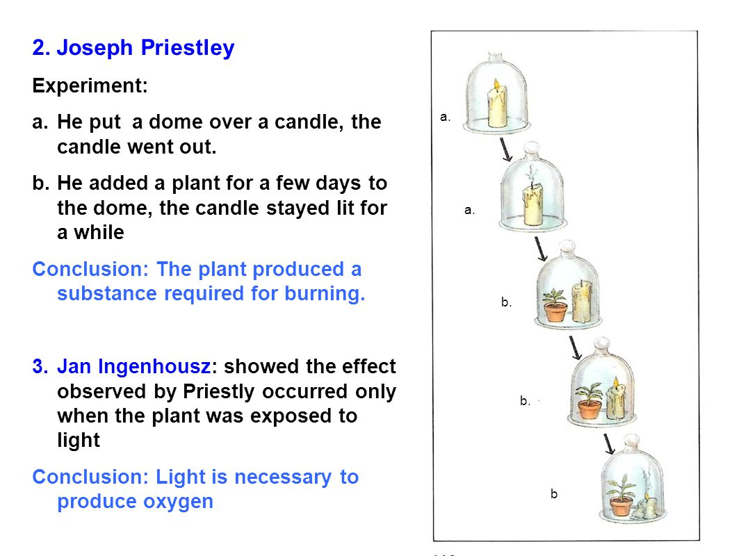 Jan Ingenhousz Photosynthesis Experiment >> Chapter 7 Photosynthesis - ppt download