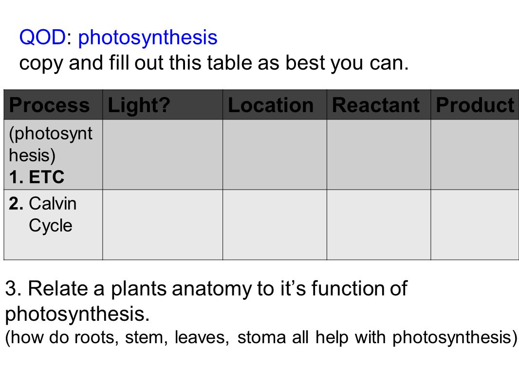 copy and fill out this table as best you can. Process Light Location