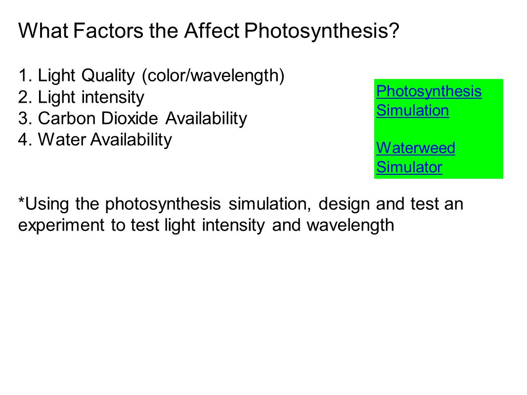 What Factors the Affect Photosynthesis