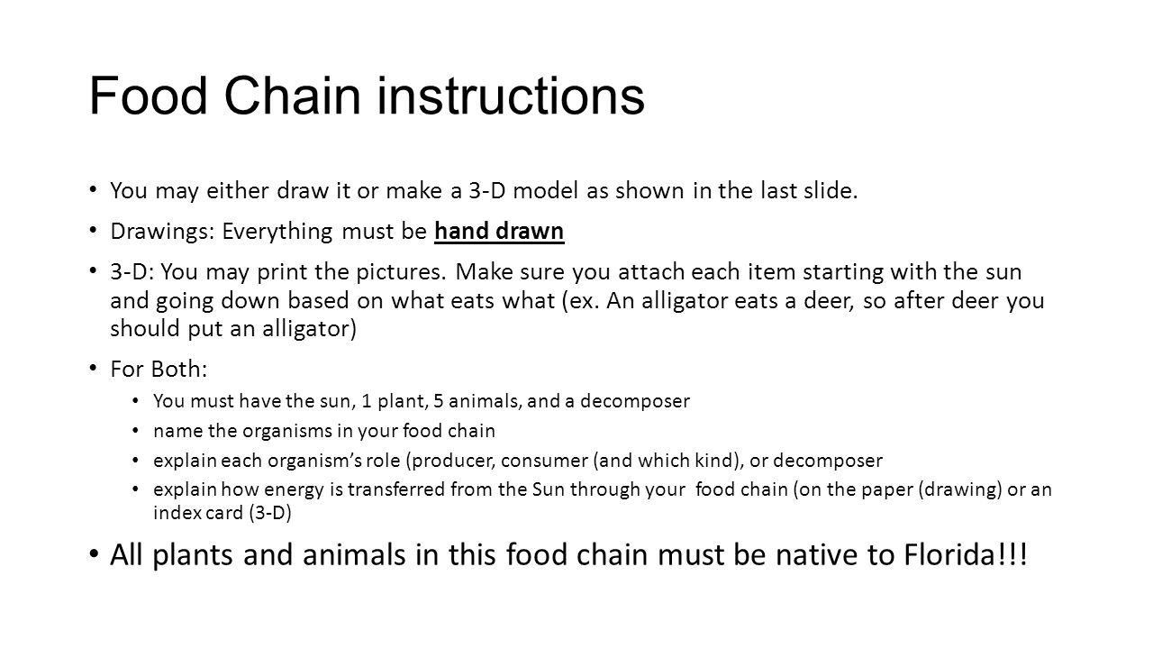 Food Chain instructions