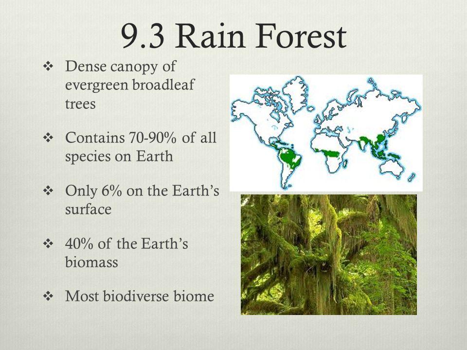 9.3 Rain Forest Dense canopy of evergreen broadleaf trees