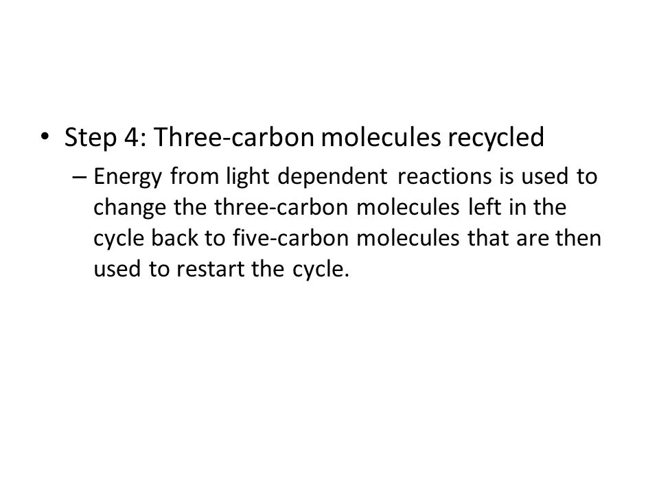 Step 4: Three-carbon molecules recycled