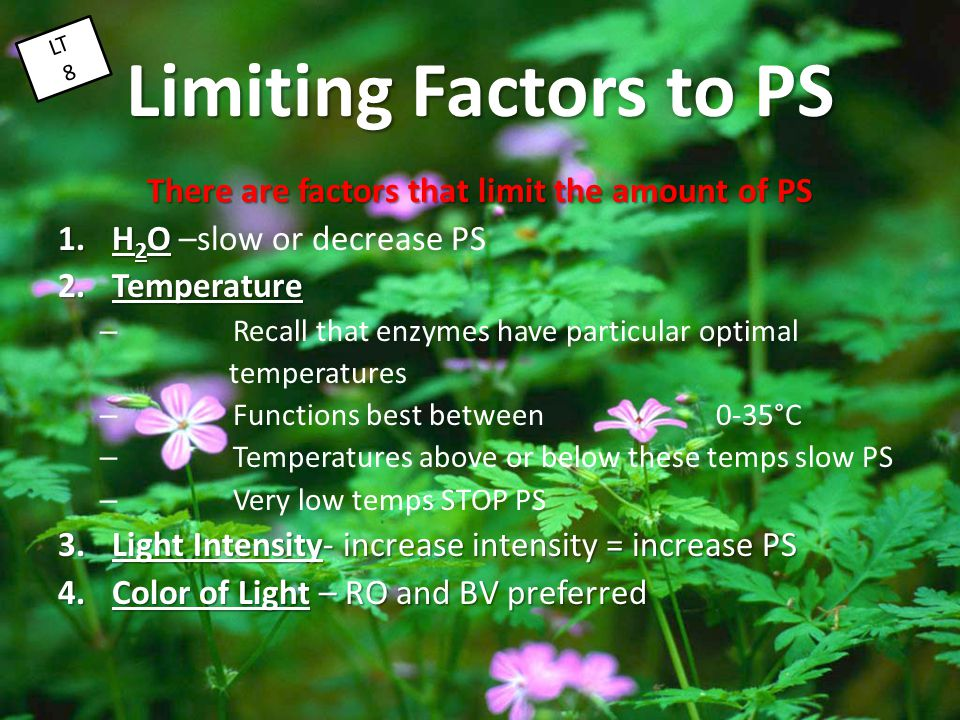 There are factors that limit the amount of PS