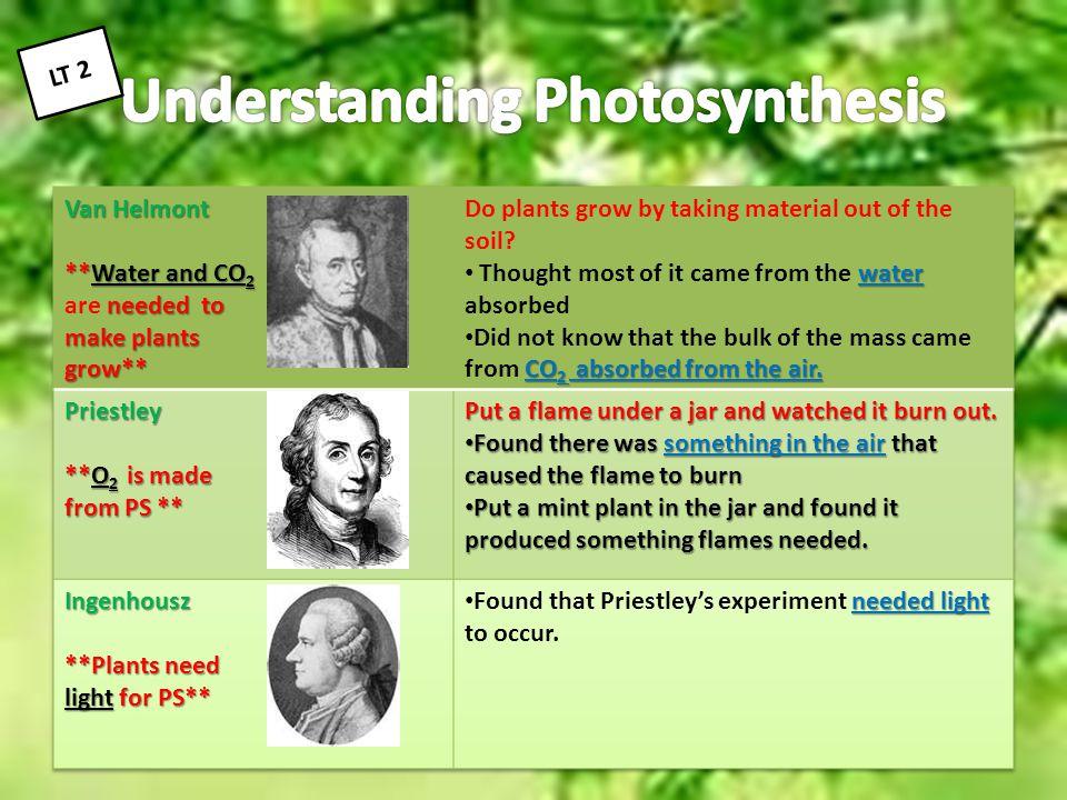 Understanding Photosynthesis