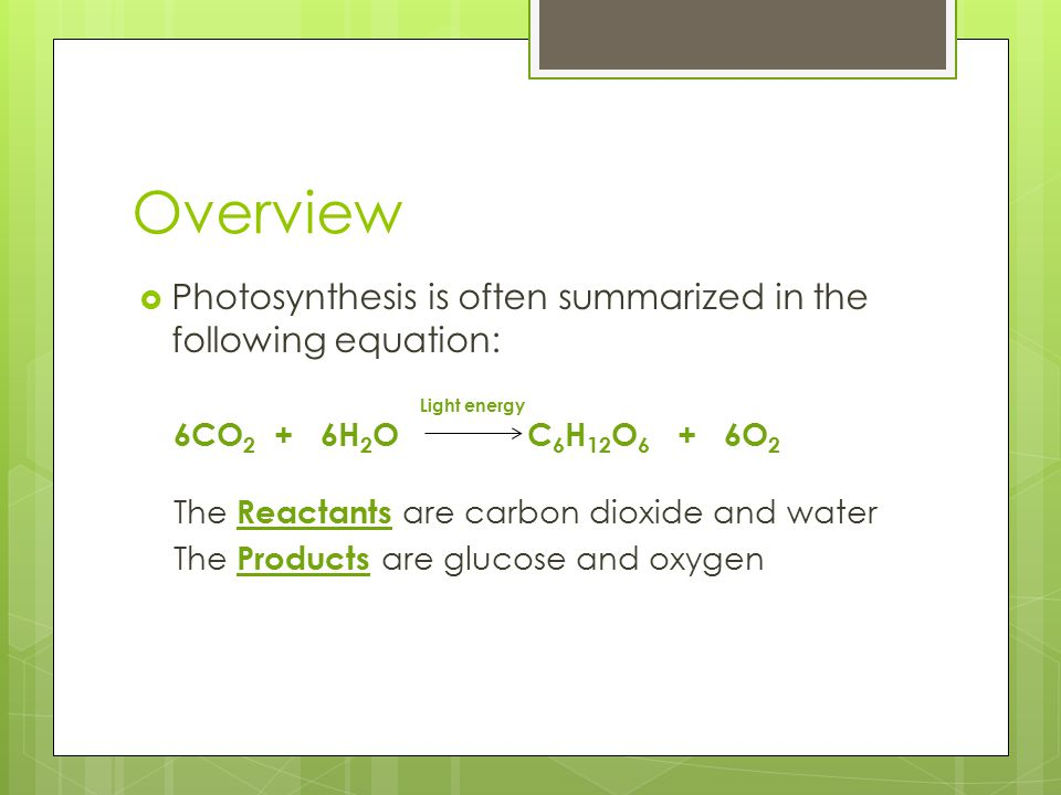 Overview Photosynthesis is often summarized in the following equation: