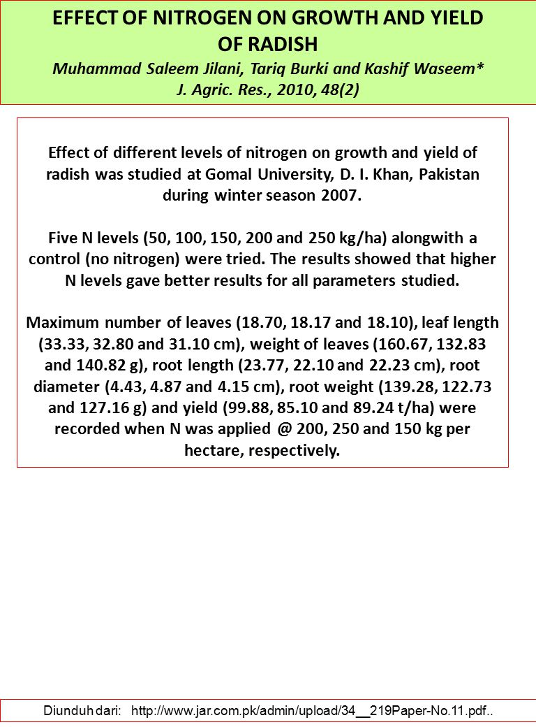 EFFECT OF NITROGEN ON GROWTH AND YIELD OF RADISH