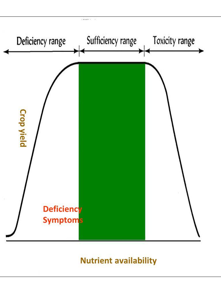 Nutrient availability