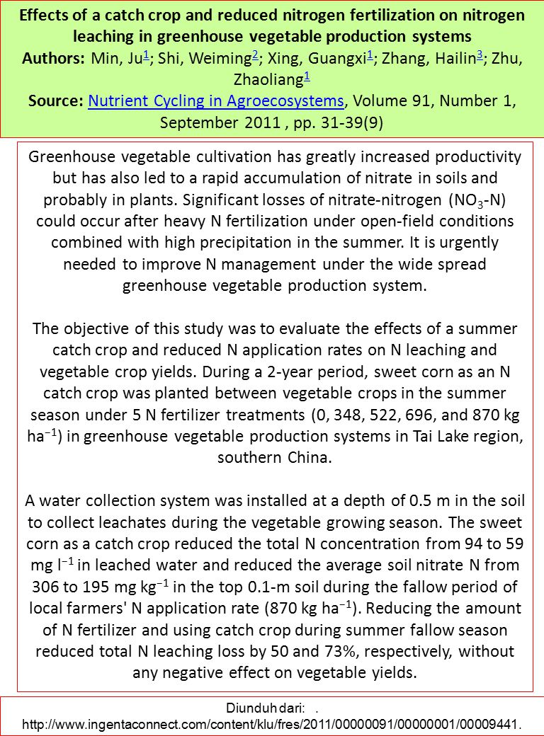 Effects of a catch crop and reduced nitrogen fertilization on nitrogen leaching in greenhouse vegetable production systems