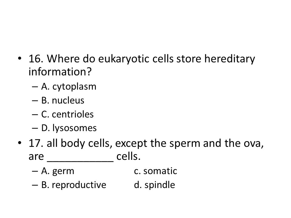 16. Where do eukaryotic cells store hereditary information