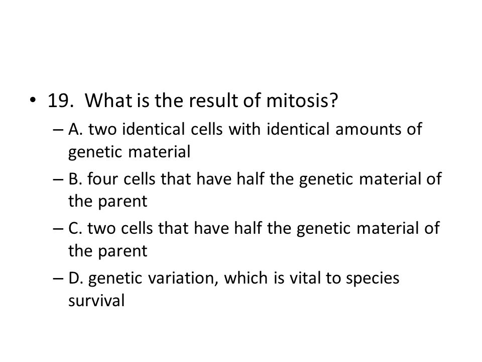 19. What is the result of mitosis