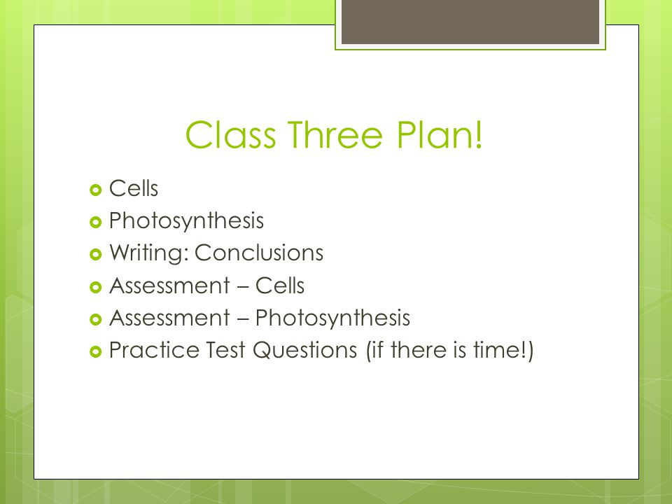 Class Three Plan! Cells Photosynthesis Writing: Conclusions