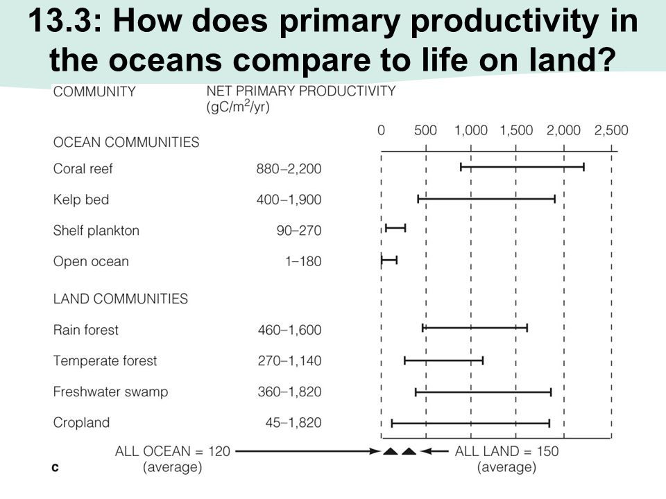 13.3: How does primary productivity in the oceans compare to life on land