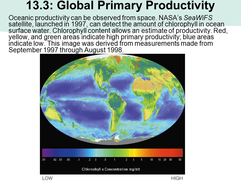 13.3: Global Primary Productivity