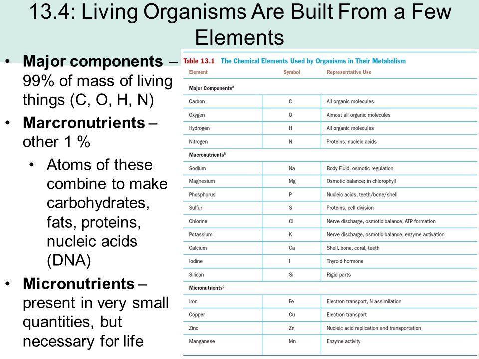 13.4: Living Organisms Are Built From a Few Elements