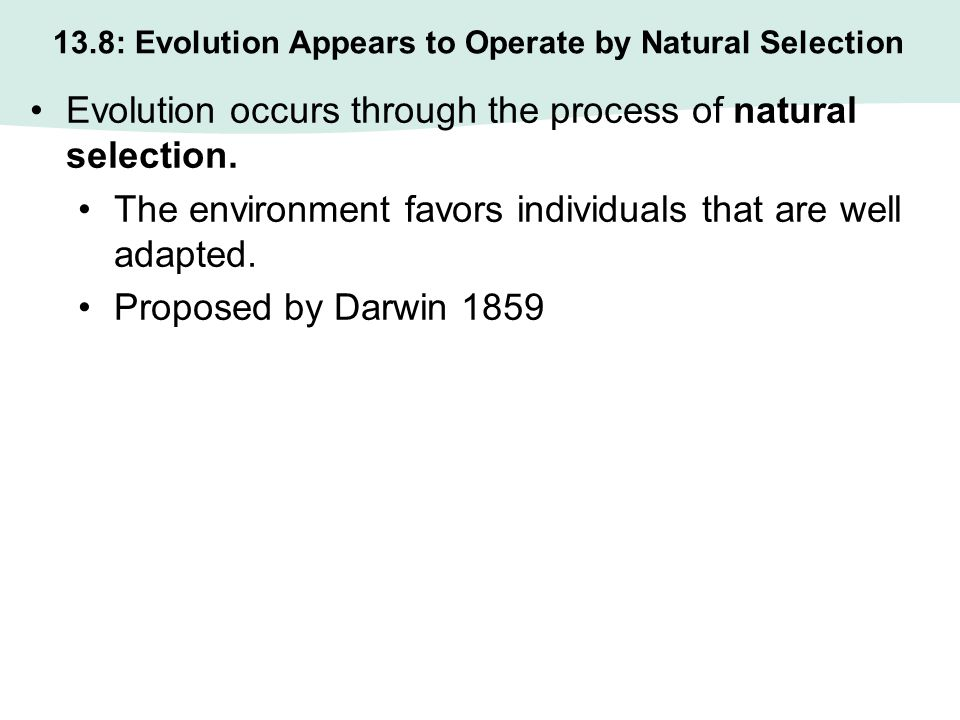 How Does Evolution By Natural Selection Operate