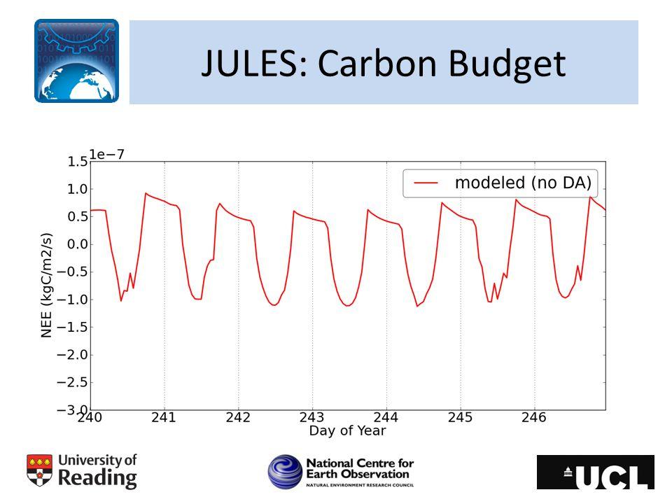 JULES: Carbon Budget