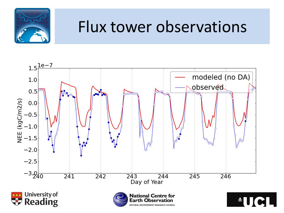 Flux tower observations