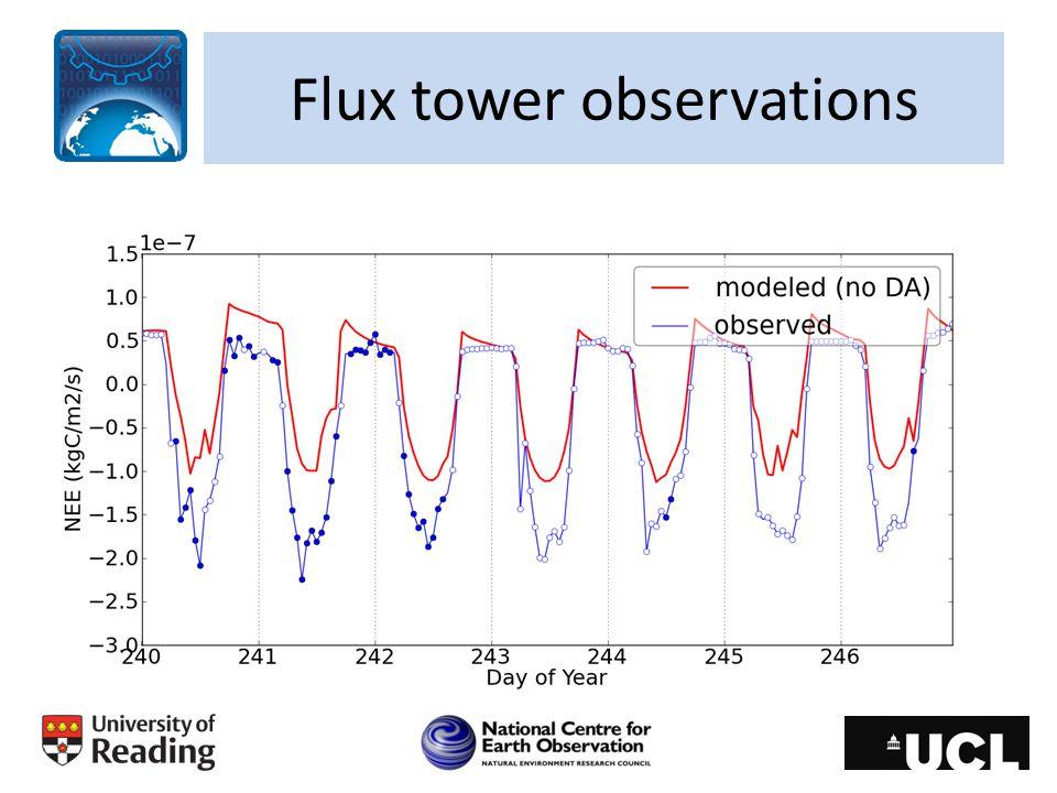 Flux tower observations