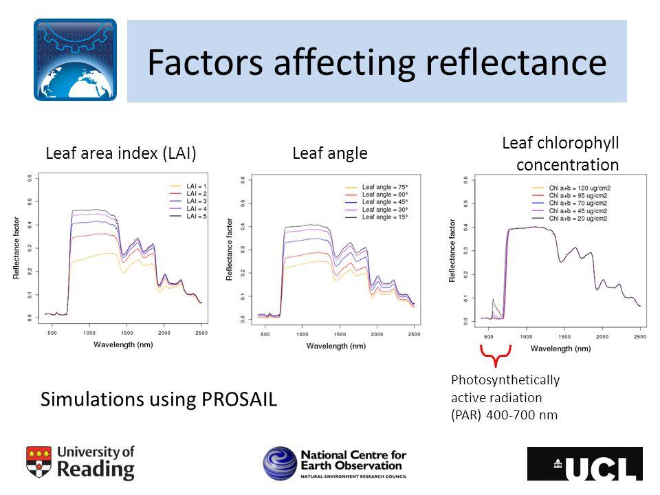 Factors affecting reflectance