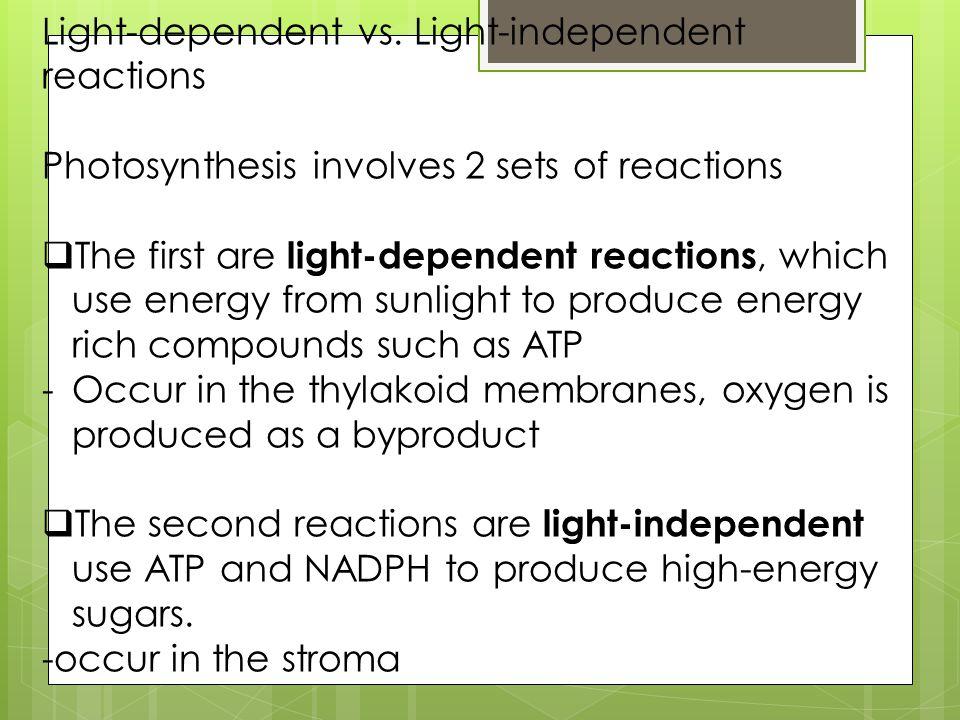 Light-dependent vs. Light-independent reactions