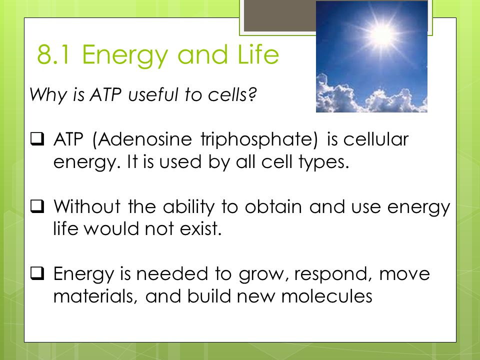 8.1 Energy and Life Why is ATP useful to cells