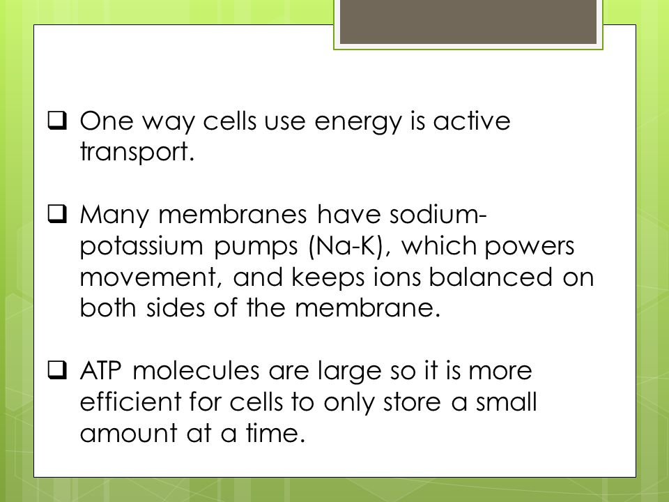 One way cells use energy is active transport.