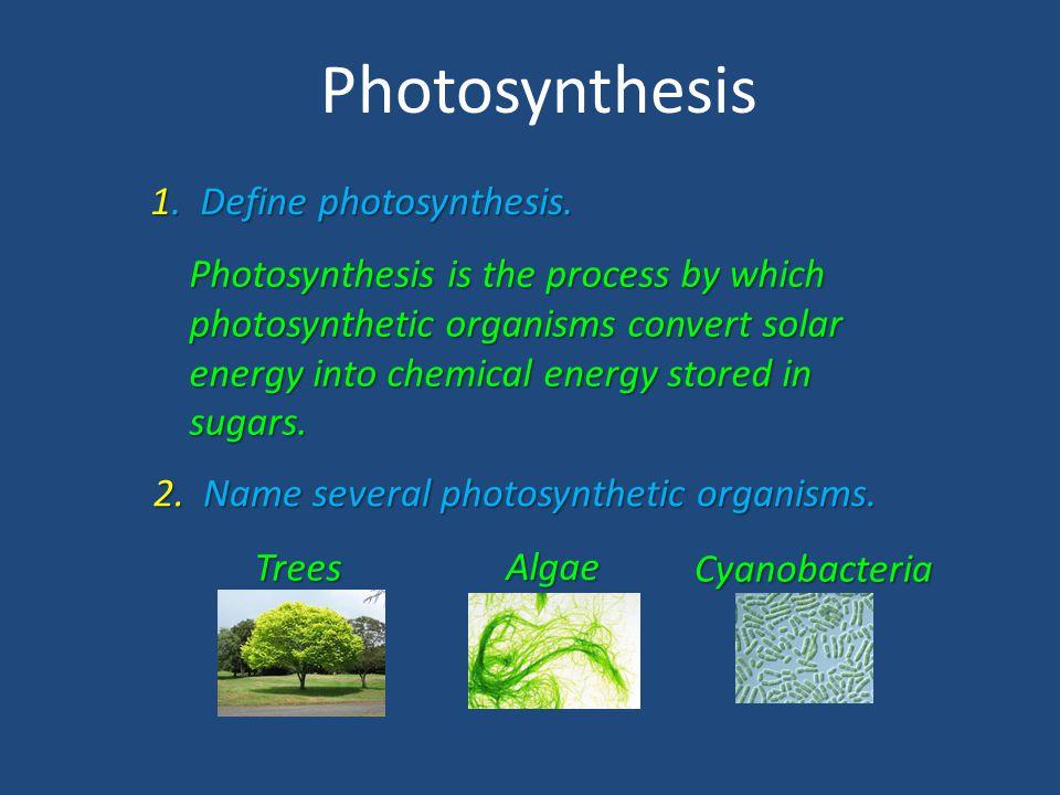 Photosynthesis 1. Define photosynthesis.