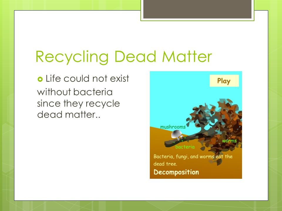 Recycling Dead Matter Life could not exist