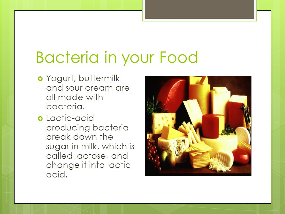 Bacteria in your Food Yogurt, buttermilk and sour cream are all made with bacteria.