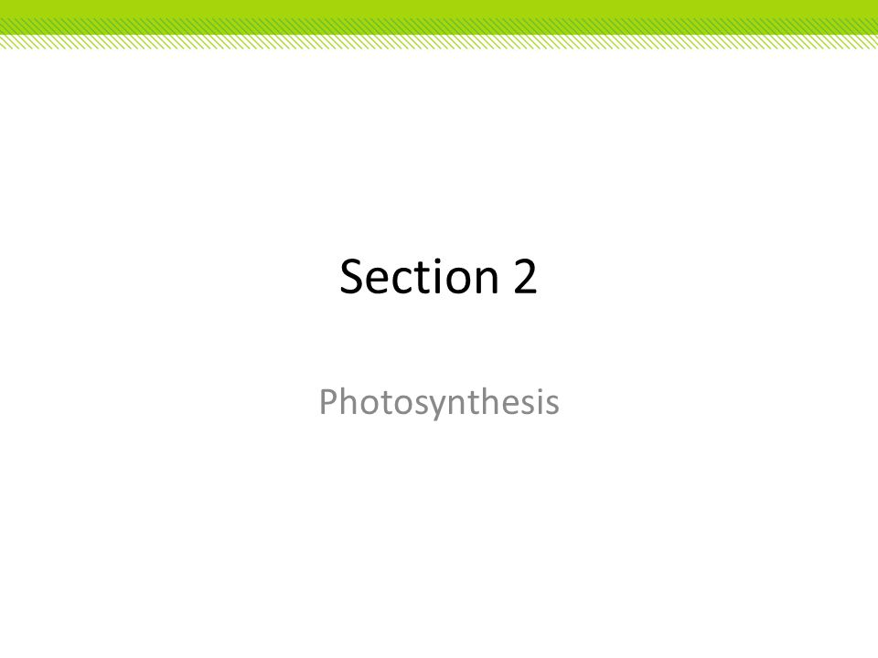 Section 2 Photosynthesis