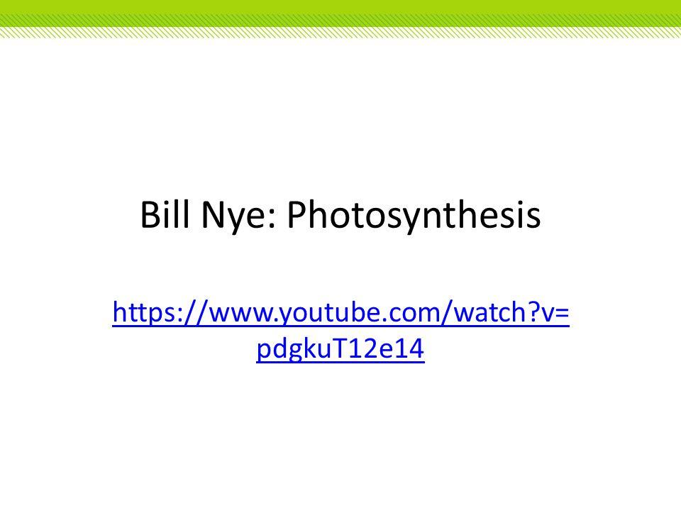 Bill Nye: Photosynthesis