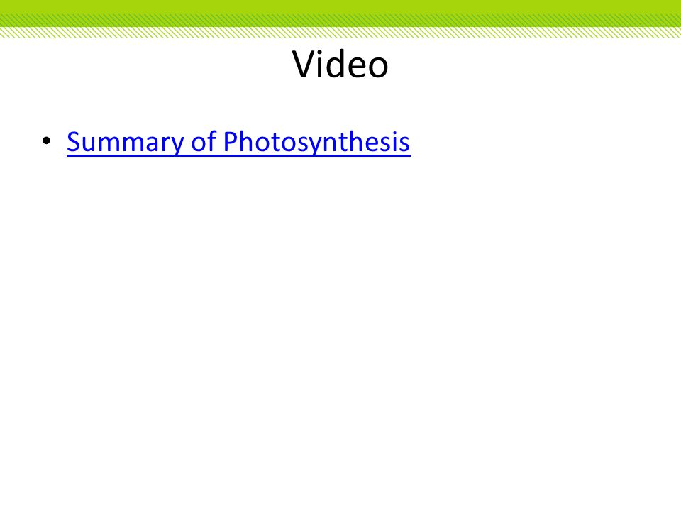 Video Summary of Photosynthesis