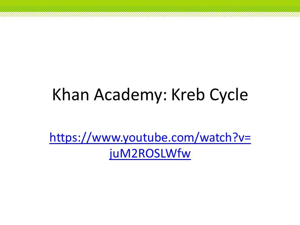 Khan Academy: Kreb Cycle