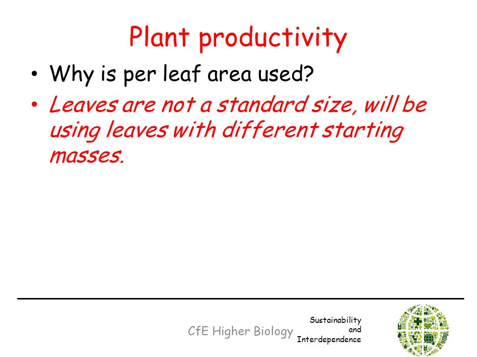 Plant productivity Why is per leaf area used