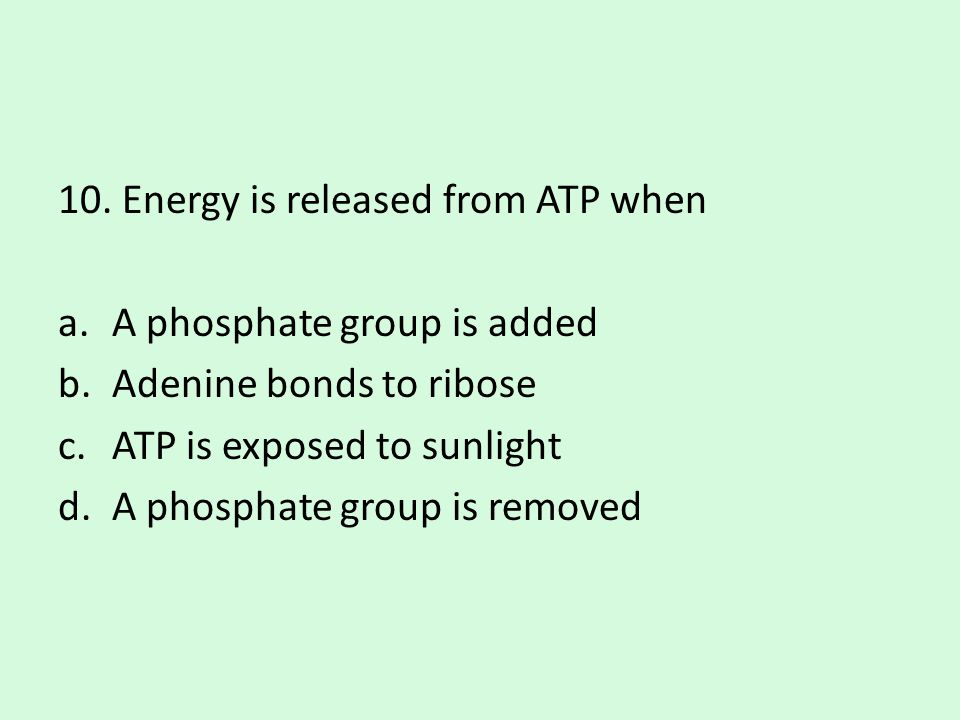 10. Energy is released from ATP when