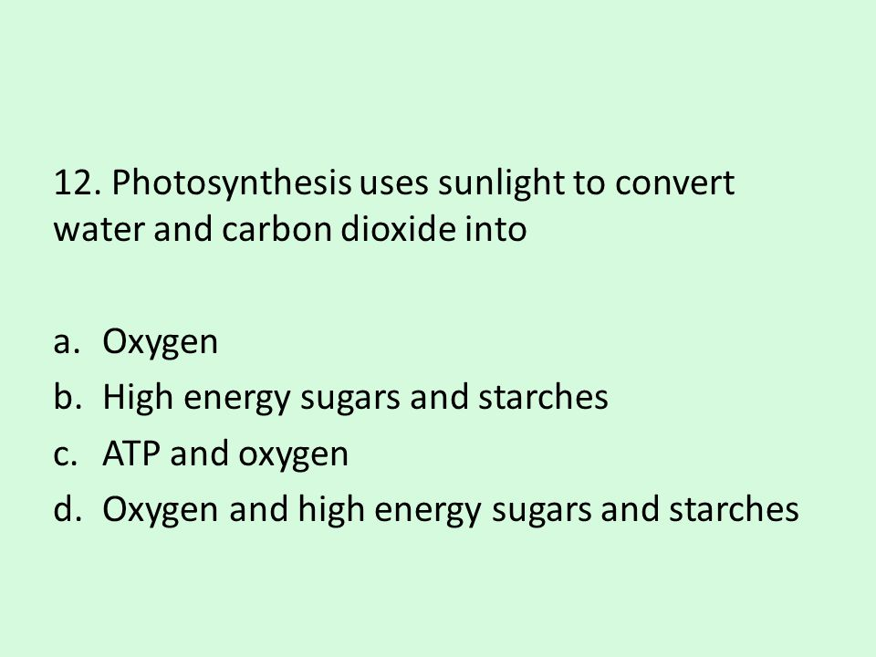 12. Photosynthesis uses sunlight to convert water and carbon dioxide into