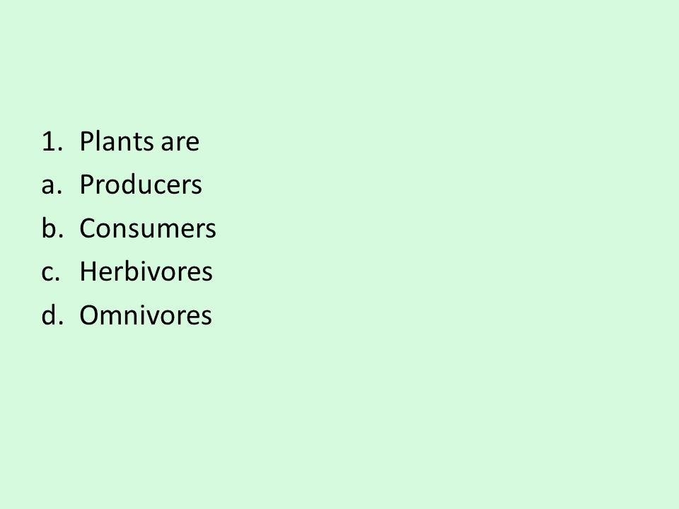 Plants are Producers Consumers Herbivores Omnivores